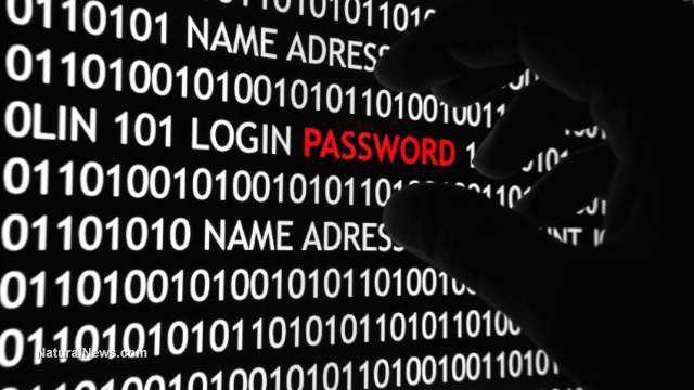 Hacker-Computer-Theft-Password-Identity-Steal